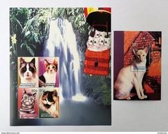 # Micronesia 2003**Mi.1486-90  Cats , MNH [15;108] - Domestic Cats