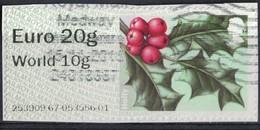 Royaume Uni 2014 Vignette Sur Fragment Holly Houx Winter Greenery Verdure D'Hiver SU - Great Britain