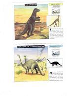 Lot 6 - Fiche Illustree - Pachycéphalosaure Dinosaure Reptile Volant Fossile Iguanodon Diplodocus - Animaux