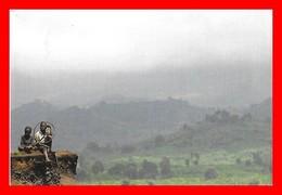 CPSM/gf République Démocratique Du CONGO. Paysage Atmosphérique Du Congo, Animé...I0614 - Congo - Kinshasa (ex Zaire)