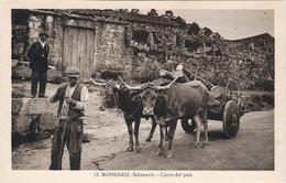Mondariz- Balneario- Carro Del Pais. - Autres
