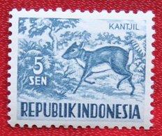 5 Sen Wild Animals | Malayan Kantschil (Mi 171 YT 119) 1956 Indonesie / Indonesien / Indonesia POSTFRIS / MNH ** - Indonesia