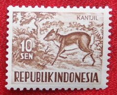 10 Sen Wild Animals | Malayan Kantschil (Mi 172 YT 120) 1956 Indonesie / Indonesien / Indonesia POSTFRIS / MNH ** - Indonesia