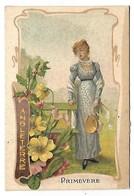 CHROMO  - Femme - Angleterre - Fleurs Primevère - Non Classés