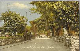 Otterburn Road - Otterburn  - HP1607 - Inghilterra