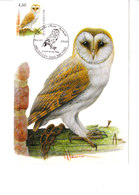 Carte Buzin - 3983 Chouette Effraie - 1985-.. Vögel (Buzin)