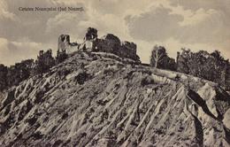 CETATEA NEAMTULUI - JUD. NEAMT / RUINES DE LA FORTERESSE / THE FORTRESS RUINS ~ 1910 - '915 (aa559) - Romania