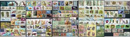 Fauna Has Many Interesting Postage Stamps - Timbres