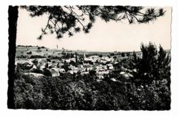 Chevannes - Vue Générale - Circulé Sans Date, Sous Enveloppe, Cpsm 9 X 14 - France