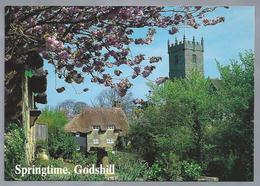 UK.- SPRINGTIME, GODSHILL, ISLE OF WIGHT. - Engeland