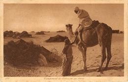 CAMPEMENT DE BEDOUINS DU DESERT  éditeur Lehnert & Landrock - Postcards