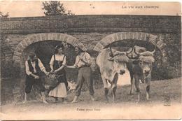 Cartolina, CPA Carte Postale, Postcard. La Vie Aux Champs. Entre Deux Feux. - Personnages