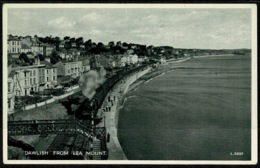 Ref 1276 - 1959 Postcard - Steam Railway And Dawlish From Lea Mount - Devon - England