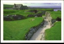 ** Landscapes Of SCOTLAND Meadows By The Sea **  Ecrite Mais Très Bon Etat - Ecosse
