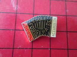 1110 Pins Pin's / Rare & De Belle Qualité  THEME : MUSIQUE / ECOLE FOUGERAISE ORGUE ACCORDEON FOUGERES - Musica