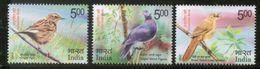 India 2017 Vulnerable Birds Nilgiri Pigeon Warbler Pipit Wildlife Fauna 3v MNH Inde Indien - India