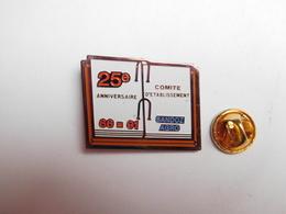 Beau Pin's , Laboratoires Sandoz Agro CE , Agriculture , Nature , 25e Anniversaire - Badges