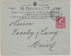 Österreich Austria Privatganzsache PU 10 H Beyer & Comp Wien 1908 - Ganzsachen