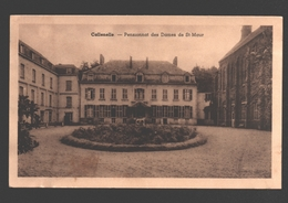 Callenelle - Pensionnat Des Dames De St-Maur - 1953 - Péruwelz