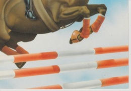 19 / 22/ 294  - HIPPISME  - Illustration  Luc  Favreau. - C. P. M. - Hippisme