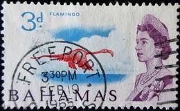 1965 Bahamas Yt 197, Mi 213 . Caribbean Flamingo . Oblitération FREEPORT 1965 - Bahamas (...-1973)