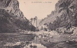 2852202El Kantara, Les Gorges - Algérie