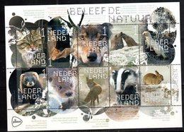 NETHERLANDS, 2018, MNH, FAUNA, WINTER ANIMALS, FOXES, WOLVES, BATS, RABBITS, SEALS, WILD CATS, FERRETS, OTTERS, SHEETLET - Big Cats (cats Of Prey)