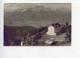 """Suisse : Leysin - Hotel """"Les Chamois"""" Et Les Dents Du Midi (n°575) - VD Vaud"""