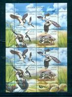 Lituanie 2018- WWF-Animals Of Lithuania (Birds) M/Sheet - Lituanie