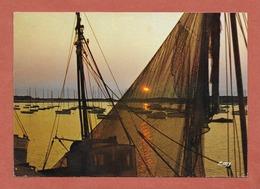 * CPM..dépt 14..HOULGATE - DIVES :  Le Port Au Repos  : Voir 2 Scans - Houlgate