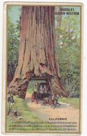 Chromo - Chocolat Guérin Boutron - Californie - L'arbre Géant - Guérin-Boutron