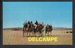 DF / ALGÉRIE / HOGGAR / GROUPE DE TOUAREGS - Algérie