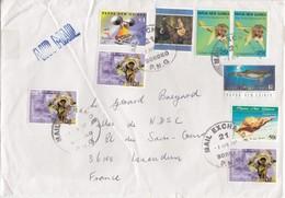 PAPUA NEW GUINEA COVER. 2 4 2007. BOROKO TO ISSOUDUN FRANCE         / 6000 - Sellos