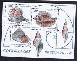 TAAF ,  FRENCH ANTARCTIC, 2019, MNH, SHELLS, SHEETLET - Coneshells