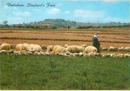 CPSM Bethlehem                       L2782 - Israel