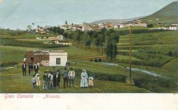 GRAN CANARIA - N° 7904 - ARUCAS - Gran Canaria