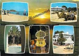 Afrique- TUNISIE    Vues D'HAMMAMET  (- Editions ISMAIL H064) *PRIX FIXE - Tunisie