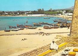 Afrique- TUNISIE HAMMAMET La Plage Vue Du Café Sidi Bou Hadid  (- Editions ISMAIL H064) *PRIX FIXE - Tunisie