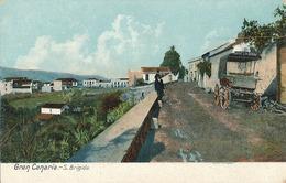 GRAN CANARIA - N° 3211 - S. BRIGIDA - Gran Canaria