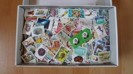 1,25 Kilo - Deutschland / Welt Papierfrei Netto ! - Timbres