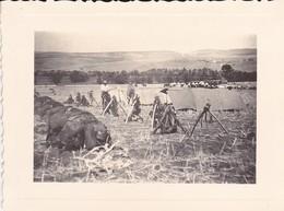 MINI PHOTO--MILITARIA--ALGERIE--OULED RAHMOUN 15-9-1935-Bivouac Montés Dans Le Fond Les Motorisés-voir 2 Scans - Algérie