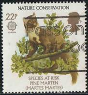 GB 1986 Yv. N°1223 - Europa - Martes Martes - Oblitéré - 1952-.... (Elizabeth II)