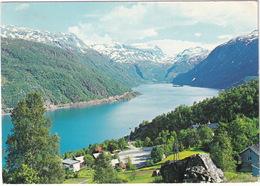 Parti Fra Horda, Roldal, Mot Roldalsvatn - Lake Roldalsvatn, Road Hardanger - Telemark  - (Norge - Norway) - Noorwegen
