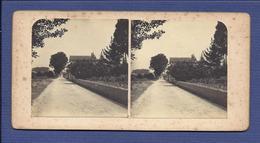 ESTRADA De CANTANHEDE à POCARIÇA (Coimbra). FOTO Estereoscopia. Old Real Photo STEREOVIEW Portugal 1900s - Photos Stéréoscopiques