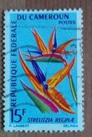 Strelitzia Reginae / Oiseau De Paradis (Fleur) - Cameroun - 1966 - Cameroun (1960-...)