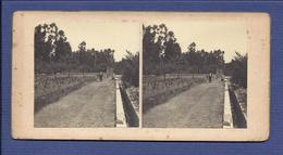 ESTRADA De CANTANHEDE à POCARIÇA Quinta Dr.Viriato Fragoso COIMBRA. FOTO Estereoscopia. Photo STEREOVIEW Portugal 1900s - Photos Stéréoscopiques
