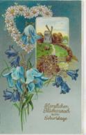 AK 0163  Herzlichen Glückwunsch Zum Geburtstage - Prägekarte Um 1905-1910 - Anniversaire