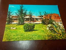 B713  Collegno Torino Scuola Elementare Viaggiata - Italia
