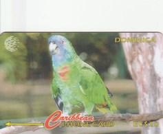 Dominica - Amazona Aurausica - Jaco Parrot - 225CDMA - Dominica