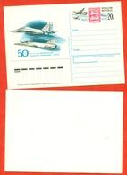"Russia 1992. The Air Regiment ""Normandie-Neman"".Post Card With Original Stamp. - Big Cats (cats Of Prey)"